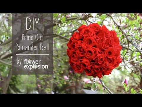 you tube giant rose video instructions